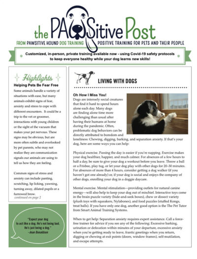 pawsitive-newsletter